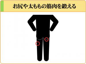 精子増量においてはお尻や太ももなどの下半身の筋肉を鍛えることが重要である