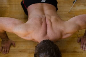 筋線維強化
