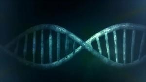 父親の喫煙によって子供のDNAが損傷してしまう可能性がある