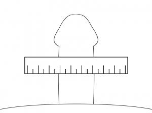 ペニスの太さの計測方法