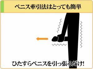 ペニス牽引法はその名前の通り「ペニスを引っ張るだけ」のちんトレである。