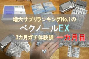 ベクノールEX(ペニス増大サプリ)は効果なし!?3ヵ月体験談で検証!一ヵ月目。