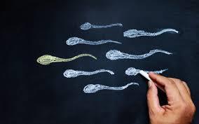 アミノ酸は精子の量・運動率を高める効果あり?妊活に?